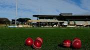 Cricket balls.